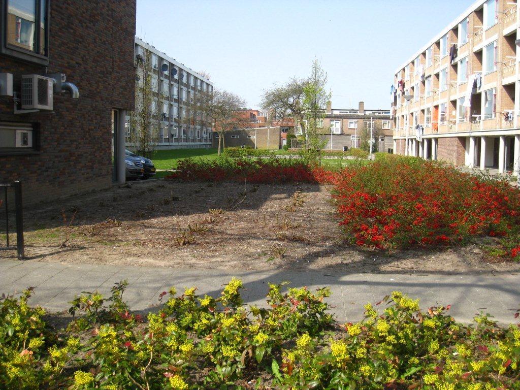 Kaalslag Charlois struiken weg april 2010