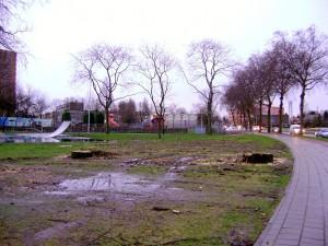 De Bomenridders Pascalweg Spinozapark