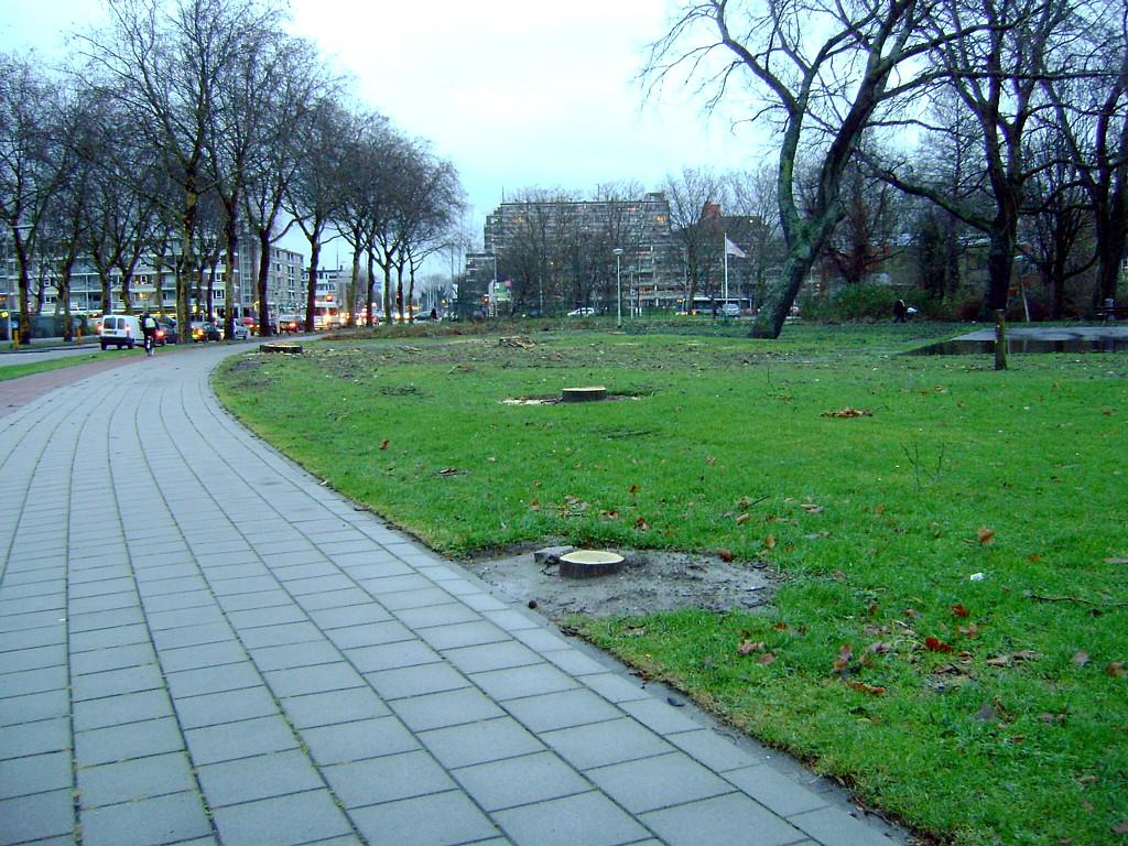De Bomenridders Spinoazapark Pascalweg