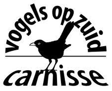 Vogels op Zuid Rotterdam