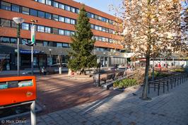 Opgeknapt Eudokiaplein foto Mick Otten stichting De bomenridders Rotterdam