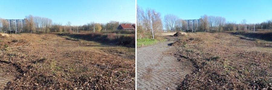 Kaalslag Park De Twee Heuvels december 2013 deelgemeente IJsselmonde stichting De Bomenridders Rotterdam