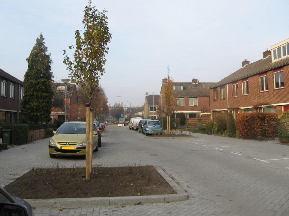 Schouw Kruidenbuurt Zernikeplaats Ommoord stichting De Bomenridders Rotterdam, 13-12-2013 deelgemeente Prins Alexander