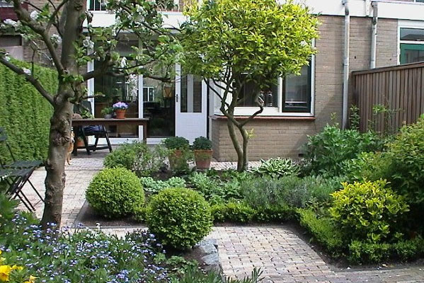 Bomen voor in kleine tuin halve parasol for Kleine stadstuin ideeen