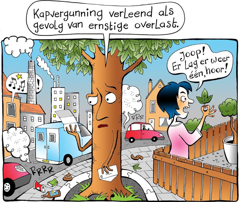 Bomen-overlast-klein