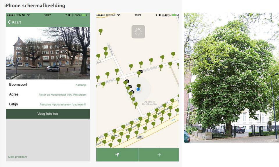 App 'Bomen in de Buurt' ook voor Android