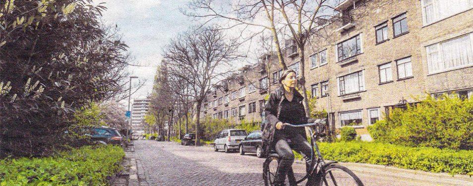 Schepenstraat: bewoners redden eige...